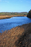 Fluss Teign Lizenzfreie Stockfotos