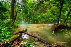 Fluss tief im Gebirgswald stockfotos