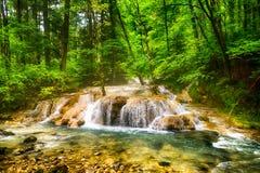 Fluss tief im Gebirgswald Lizenzfreie Stockfotos