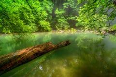 Fluss tief im Gebirgswald lizenzfreie stockbilder