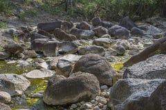 Fluss tief im Gebirgswald Stockbilder