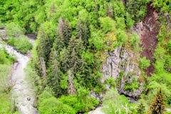 Fluss tief im Gebirgswald stockbild