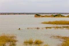Fluss Tigris im Irak Lizenzfreie Stockfotos