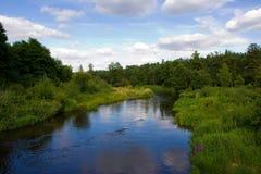 Fluss umgeben mit dem Grün an einem Sommertag Lizenzfreies Stockbild