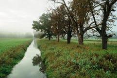 Fluss und Bäume stockbild