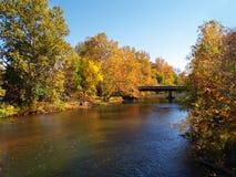 Fluss und Bäume im Herbst stockbilder