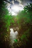 Fluss und Bäume mit dem Sun und Wolken dem eingelassenen Hawaii Stockbild