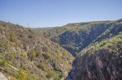 Fluss und Berge Lizenzfreies Stockbild