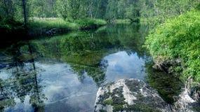 Fluss und Blumen stockfoto
