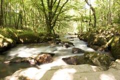 Fluss und Felsen stockfotografie