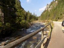 Fluss und Fluss-Steine Lizenzfreie Stockfotos