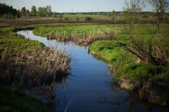 Fluss- und Frühlingsfeld stockfotografie