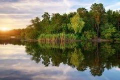 Fluss und Frühlingswald lizenzfreie stockbilder