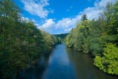 Fluss und grüner Wald lizenzfreies stockfoto