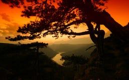 Fluss und Hügel von der Spitze des Berges im Sommer Stockbilder