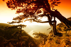 Fluss und Hügel von der Spitze des Berges im Sommer Lizenzfreies Stockfoto
