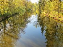 Fluss und schöne Frühlingsbäume Stockfotografie
