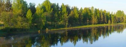 Fluss und Wald Stockbild