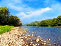 Fluss und Wald Lizenzfreies Stockbild