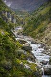 Fluss und Wald im Himalaja Stockfotografie