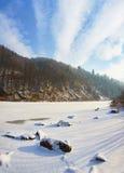Fluss unter dem Eis und ganz um fabelhafte schneebedeckte Koniferenfo stockbild