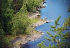 Fluss unter den Kiefernwäldern lizenzfreies stockbild