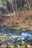 Fluss unter Herbstlandschaften Stockbilder