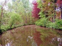 Fluss von Belgien-Park Stockfotos