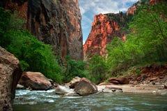Fluss von Zion Lizenzfreie Stockfotos