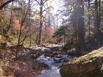 Fluss Voroshilovka Stockbild