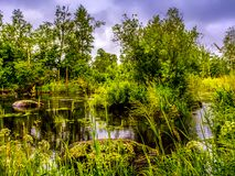 Fluss Vuoksa Lizenzfreies Stockbild