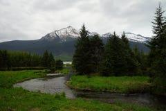 Fluss, Wald und Berge nahe Mendenhall-Gletscher, Alaska Stockfotografie