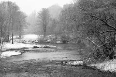 Fluss Weisse Elster im Nebel im Winter, mit Bäumen Stockfotos