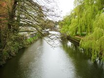 Fluss Wey bei Guildford Stockbilder