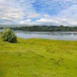 Fluss-, Wiesen- und Floodplainwald Lizenzfreies Stockbild