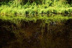 Fluss wird im Wasser reflektiert Lizenzfreie Stockfotografie