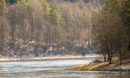 Fluss zur Frühlingszeit Stockbilder