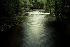Fluss zwischen Bäumen im dunklen Wald Lizenzfreie Stockbilder