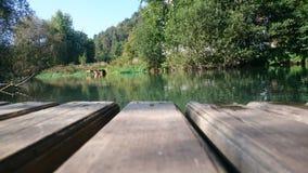 Flussanlegestelle Stockbilder
