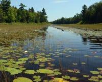 Flussansicht Lizenzfreies Stockfoto