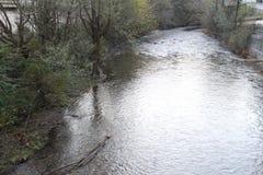 Flussansicht innerhalb des spanischen Waldes Lizenzfreies Stockfoto