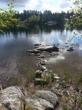 Flussansicht am Sommer Lizenzfreie Stockbilder