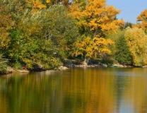 Flussbank im Herbst Lizenzfreies Stockfoto