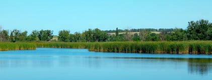 Flussbank mit Reflexion von Bäumen im Wasser, sonniger Tag des Sommers stockbild