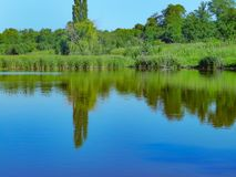 Flussbank mit Reflexion von Bäumen im Wasser, sonniger Tag des Sommers stockbilder