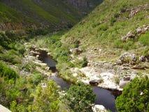 Flussbetrieb durch grüne Schlucht stockfotos
