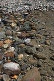 Flussbett Stockfotos