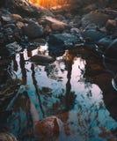 Flussbett mit einer Reflexion Lizenzfreie Stockfotos