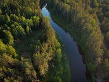 Flussbiegung im Wald auf dem Sonnenuntergang mit Reflexion Lizenzfreies Stockfoto