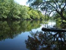Flussdock Stockfotografie